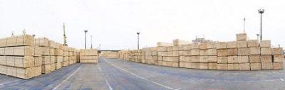 Ceny drewna i tarcicy